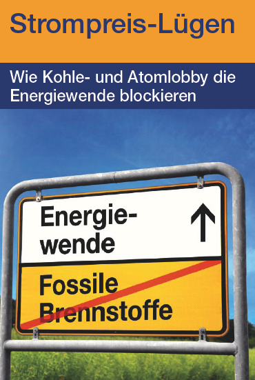 Infokampagne zur Strompreislüge, Umweltinstitut München